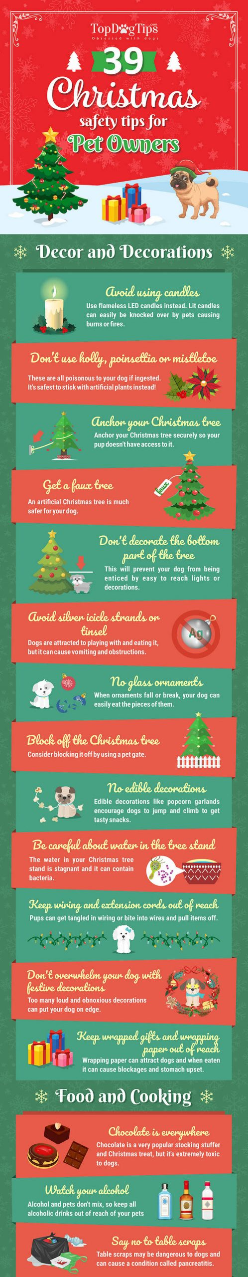 7 Ways To Keep Your Pet Safe During This Holiday Season