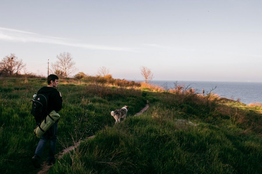 Top 10 Spring Activities to Keep Your Dogs Happy